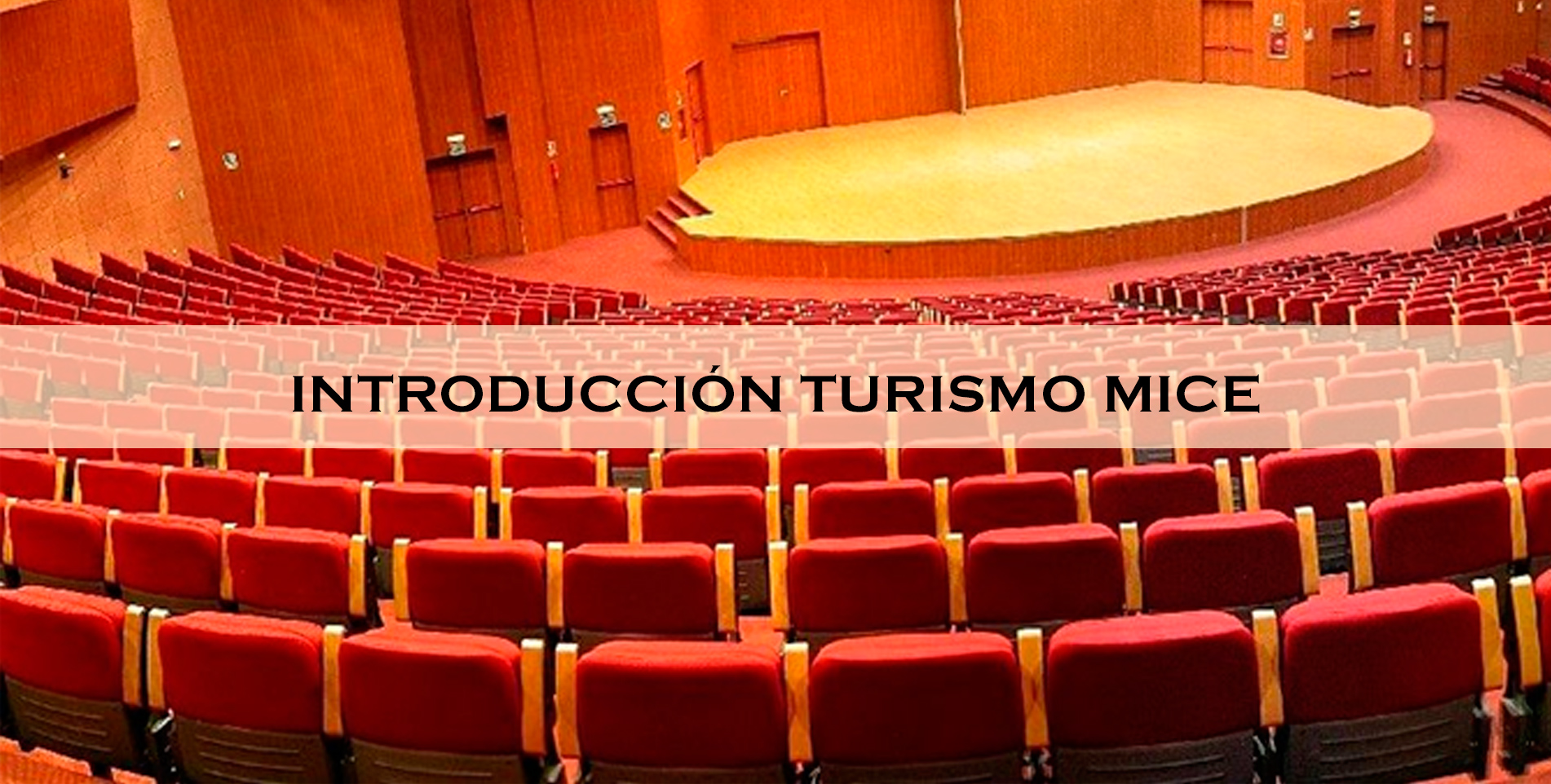 curso_introduccion_mice_b1